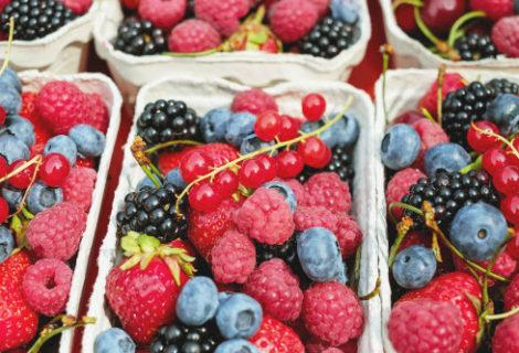 Sleek, Simple Food Storage Solutions