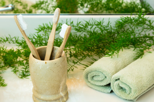 Brush Your Teeth with a Bamboo Toothbrush
